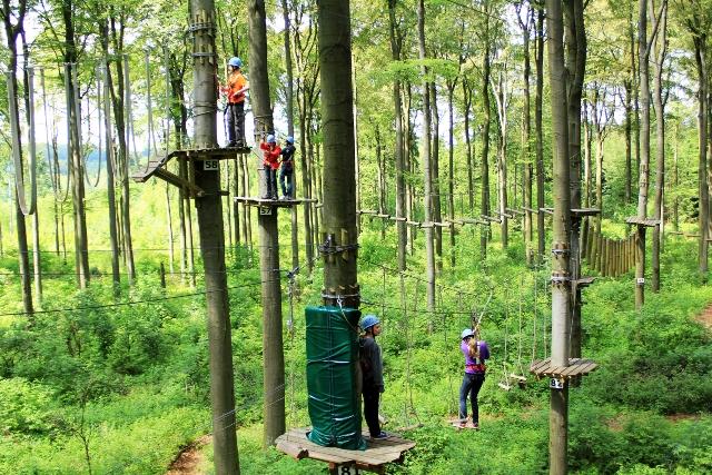 Hier gehts zu Klettern im Kletterwald Kassel