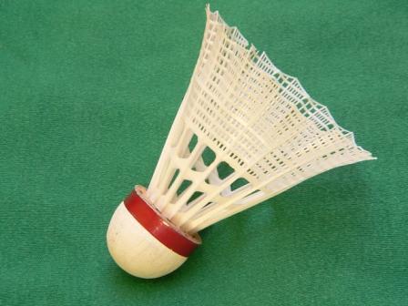 Hier gehts zu Badminton - 60 Minuten (1x pro Monat)